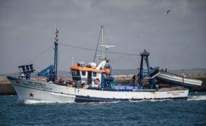 Novos limites da pesca da sardinha variam entre 1.575 e 4.725 quilogramas