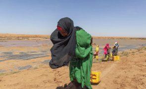Alterações climáticas agravam conflitos em zonas vulneráveis como Sahel ou Corno de África