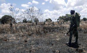 Moçambique/Ataques: Presidente Nyusi recebe Kagame e destaca