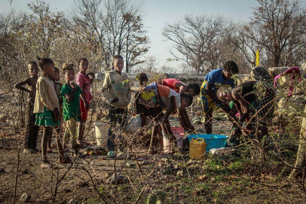 Mais de 1,3 milhões de pessoas no sudoeste de Angola sofrem de fome extrema