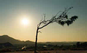 Meteorologia: Previsão do tempo para terça-feira, 28 de setembro