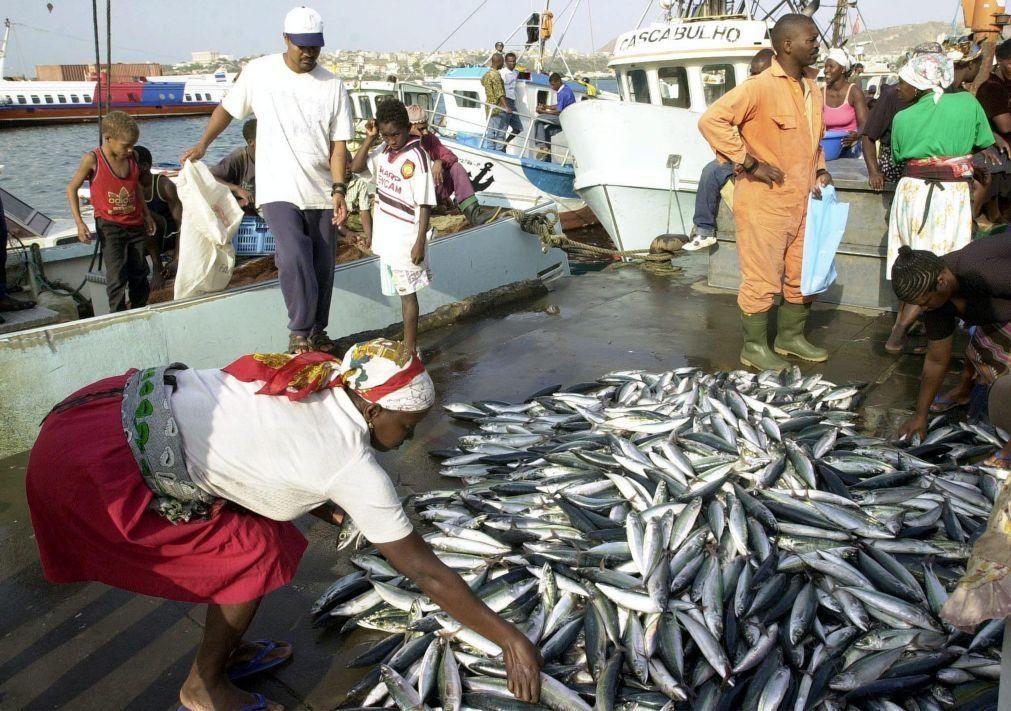Exportações cabo-verdianas de conservas e peixe congelado disparam para 5,3 MEuro num mês