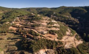 PAN quer alargamento do prazo de consulta pública de avaliação ambiental sobre lítio