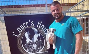 Marco Costa Apresenta um novo cão e fala em amor, mas não se livra das críticas