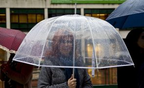 Aviso amarelo em 8 distritos no domingo devido à chuva e vento forte