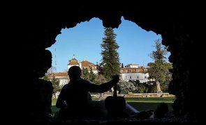 Primeiro Festival Internacional de Ciência em Portugal é dedicada à arte