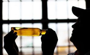 Azeite de Murça conquistou 19 medalhas em 2021 e aumentou 30% nas vendas