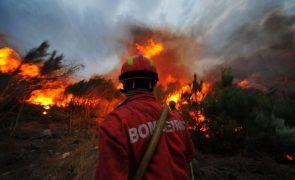 Mais de 130 operacionais e cinco aeronaves combatem incêndio em Sintra