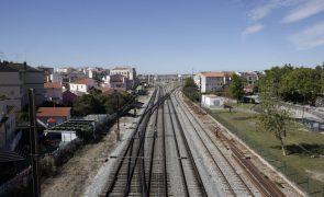 IP avança com quadruplicação da Linha de Cintura e modernização da Linha do Norte