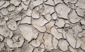 Governo de Cabo Verde aprova 1,5 milhões de euros para atenuar mau ano agrícola
