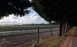 Associação ambientalista Zero alerta para poluição gerada por fertilizantes agrícolas