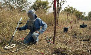 Angola pede ao Japão aprovação de apoio à desminagem proposto em 2018