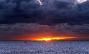 Lava do vulcão de La Palma ocupa 656 hectares e registaram-se 20 sismos