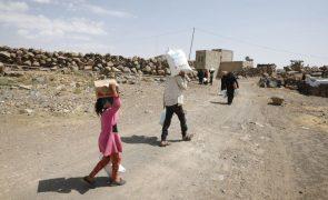 Cerca de 3.000 milhões de pessoas não tem acesso a alimentação saudável - ONU