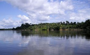 Brasil e Colômbia comprometem-se com a defesa da Amazónia na COP26