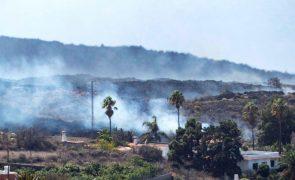 Cerca de 500 pessoas obrigadas a abandonar as suas casas em La Palma