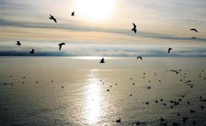 Meteorologia: Previsão do tempo para sábado, 23 de outubro