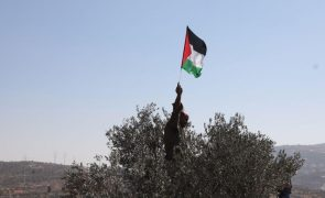ONG palestinianas declaradas terroristas por Israel pedem apoio internacional