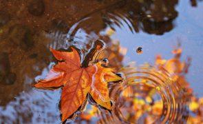 Meteorologia: Previsão do tempo para quinta-feira, 28 de outubro