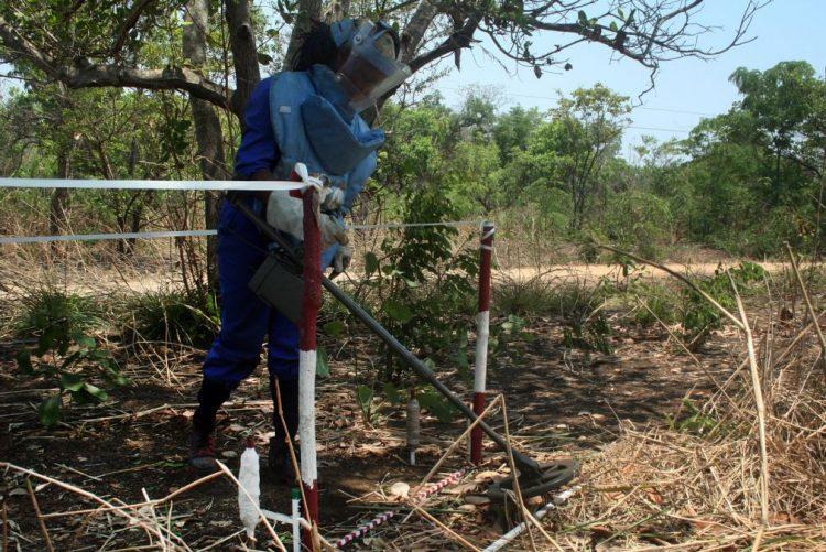 Volta a pedir-se apoio para desminar Angola 20 anos depois da visita de Diana