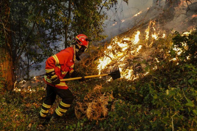 Ativado Plano Municipal de Emergência de Miranda do Corvo, casas em risco devido a incêndio - Câmara