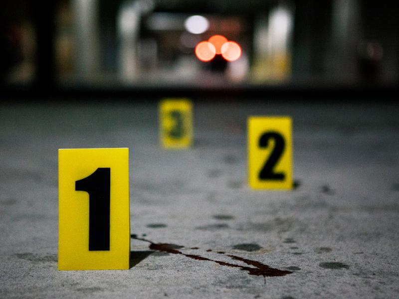 Homem mata emigrante brasileira e enterra-a em Vila Nova de Gaia